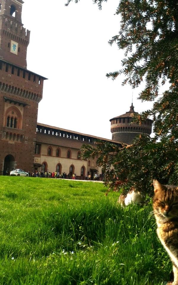 ミラノの「スフォルツェスコ城」ってどんなお城?!総力取材! | イタリア観光ガイド