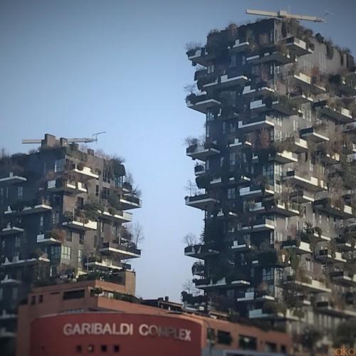 ミラノが発信する未来の住まい!「垂直の森」とは!? | イタリア観光ガイド