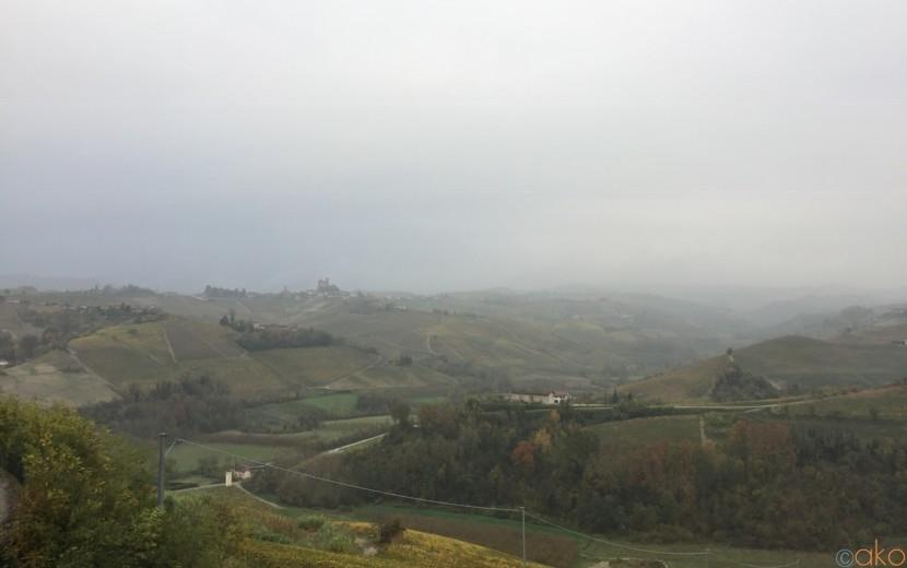 セッラルンガ・ダルバが世界に誇るワイナリー、フォンタナフレッダ| イタリア観光ガイド
