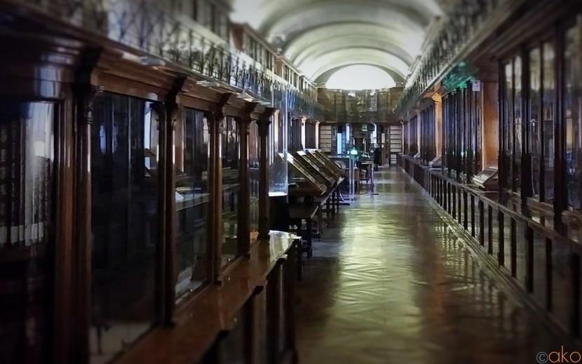 ヨーロッパ映画の世界観!トリノ・トリノ王立図書館をご案内♪| イタリア観光ガイド
