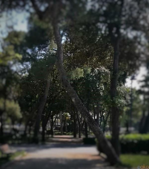 映画ファンもそうでなくても!リミニ、フェデリコ・フェリーニ公園|イタリア観光ガイド